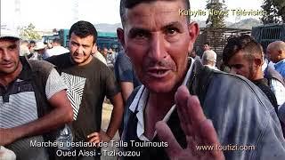 Reportage au marché à bestiaux de Talla toulmouts de Oued Aissi (Tizi-ouzou)