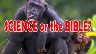 Believing in modern science or the Bible - which is more absurd?