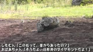 エゴマの種まき~野田村 日形井地区~