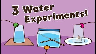 3 Easy Water Experiments for Kids