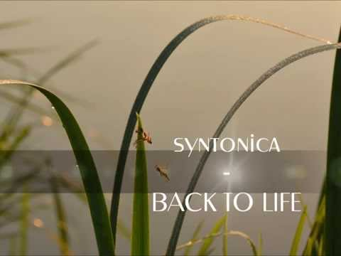 syntonica - back to life