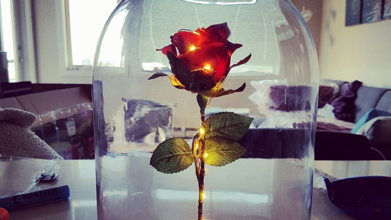 Diy enchanted rose from beauty and the beast youtube diy enchanted rose from beauty and the beast izmirmasajfo