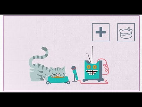 Download WHISKAS® K.I.T. - Waarom miauwen katten?