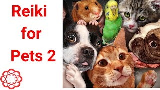 Reiki for Pets/Animals 2/Energy Healing