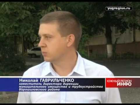 Ворошиловский район Ростова оказался в плену амброзии