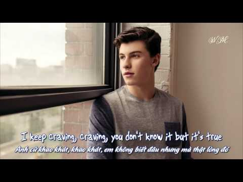 [Lyrics+Vietsub] Shawn Mendes - Imagination