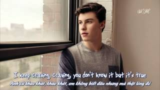 Lyrics Vietsub Shawn Mendes Imagination