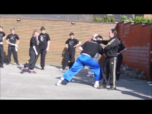 One off the many shaolin kung fu lessons with application taolu GM Walter Toch