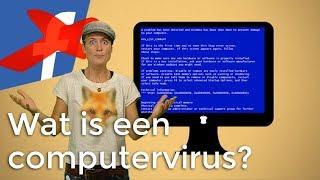 Wat is een computervirus? | Digitaal | Het Klokhuis