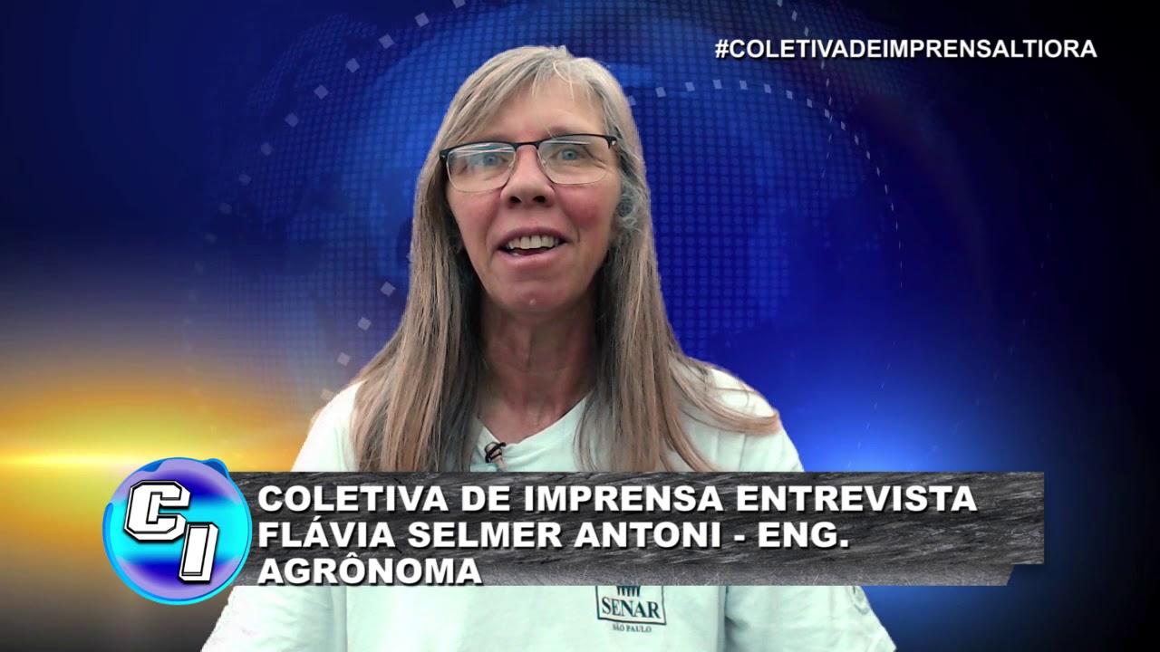 Download COLETIVA DE IMPRENSA 15112019 BLOCO 3