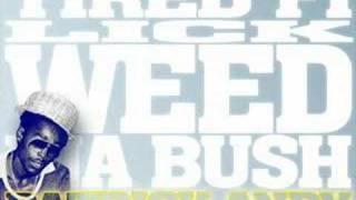 Patrick Andy - Tired Fi Lick Weed Ina Bush