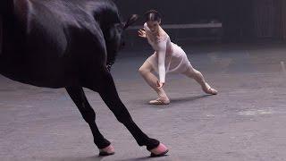 Çerkes Müziği ile  Dans Eden At