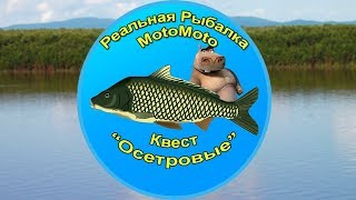 Квест Осетровые  Реальная Рыбалка