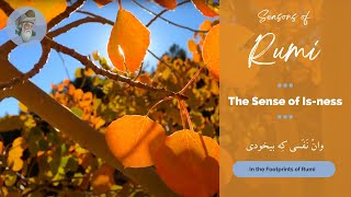 "Seasons of Rumi - ""The Sense of Is-ness"" - (In Persian and English)"