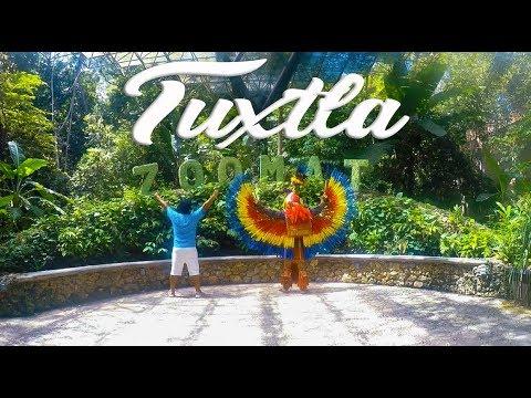 Tuxtla Gutierrez-Chiapas (zoomat y parque de la Marimba)
