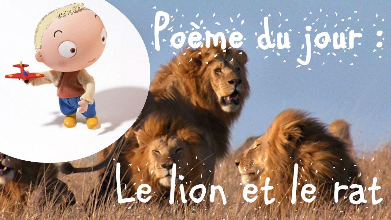 Poème Du Jour Le Lion Et Le Rat Jean De La Fontaine Youtube