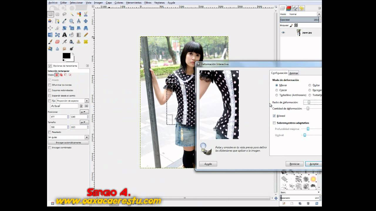 how to add plugins to gimp