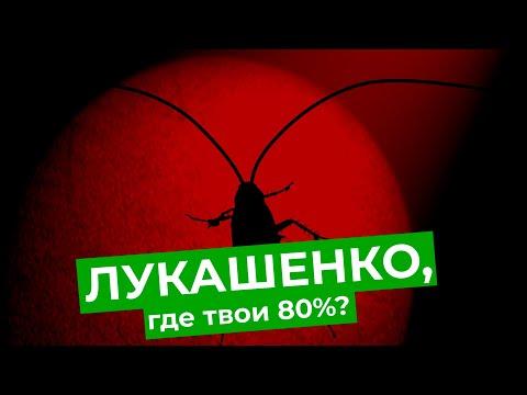 Что белорусы думают