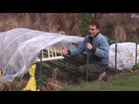 Growing Vegetables Late into the Season