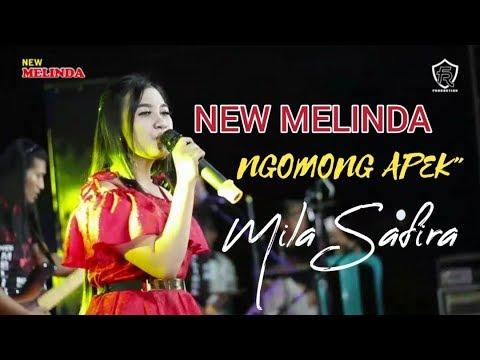 NGOMONG APEK - MILA SAFIRA _ NEM MELINDA