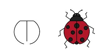 ladybug draw easy