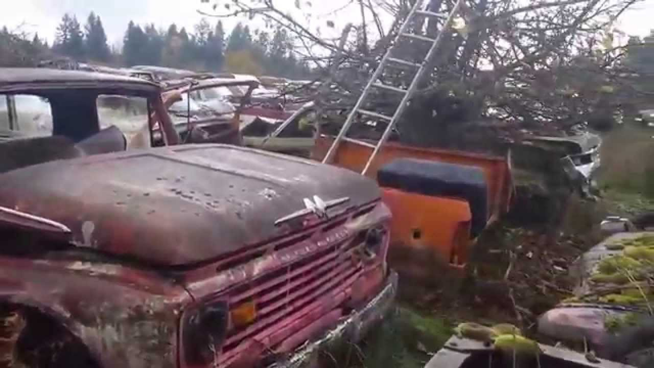 Huge abandoned classic car collection - YouTube