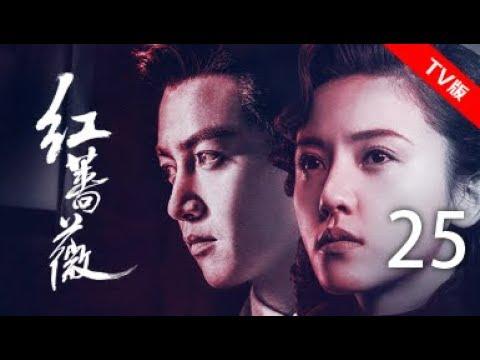 红蔷薇 25丨Wild Rose 25(主演:杨子姗,陈晓,毛林林,谭凯)【TV版】