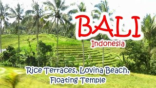 Bali Rice Terraces, Lovina Beach and Floating Temple