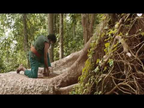 Khoya Hain (Baahubali - The Beginning) HD(wapking.fm)