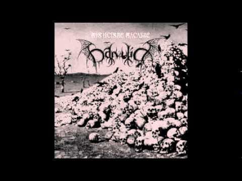Darvulia - Le Reflet Morbide de l'Âme