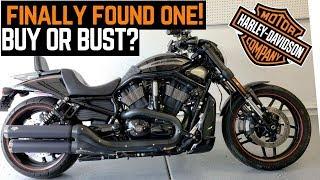 Buy or Bust: Harley Davidson Night Rod Special Craigslist Find (V Rod) | First Ride