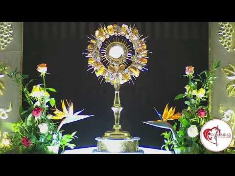 Hora santa Maria Madre del Amor Hermoso jueves 6 febrero 2020