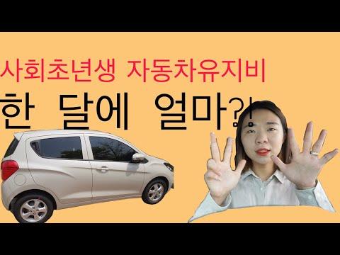 20대자동차보험료