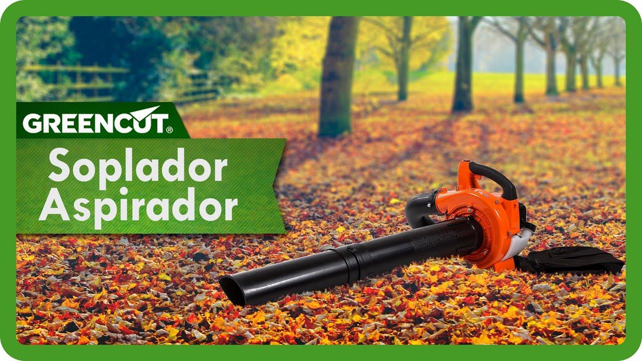 Soplador aspirador de hojas motor de gasolina 26cc youtube - Soplador aspirador de hojas ...