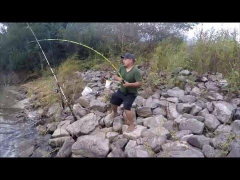 BANK FISHING FOR BIG CATFISH