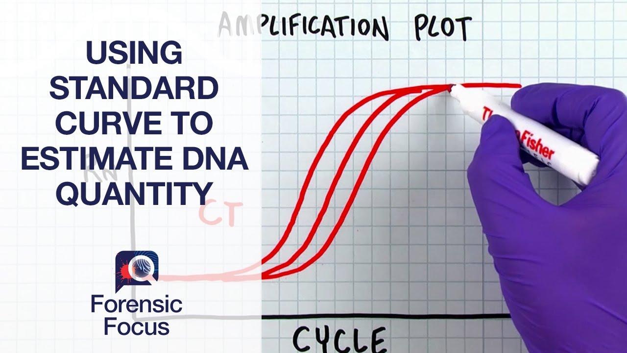 standard curve analysis for dna quantities Analytical chemistry studies quantitative analysis is the measurement of the quantities of similar to using a calibration curve standard addition.