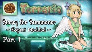 Terraria 1.3.3 Expert Modded Summoner Part 1   Ragnarok Attacks!
