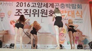 160909 판타스티(Fantastie) Shake It Cover Dance [2016고양곤충박람회 조직위원회 발대식 축하공연] 직캠 by 욘바인첼