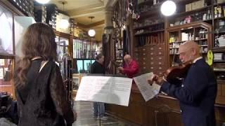 """Divertimento"" for violin and bass clarinet, 1st mouv. Alexandre Schubert"