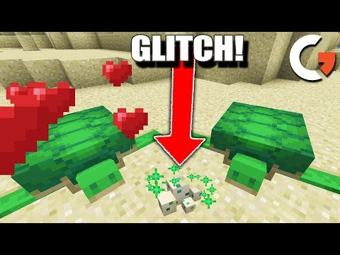 HOW TO HATCH TURTLE EGGS IN MINECRAFT + WEIRD GLITCH!