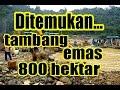 GEGER !! Ditemukan Tambang Emas 800 Hektar di Aceh, Warga Sekitar Kaya Mendadak