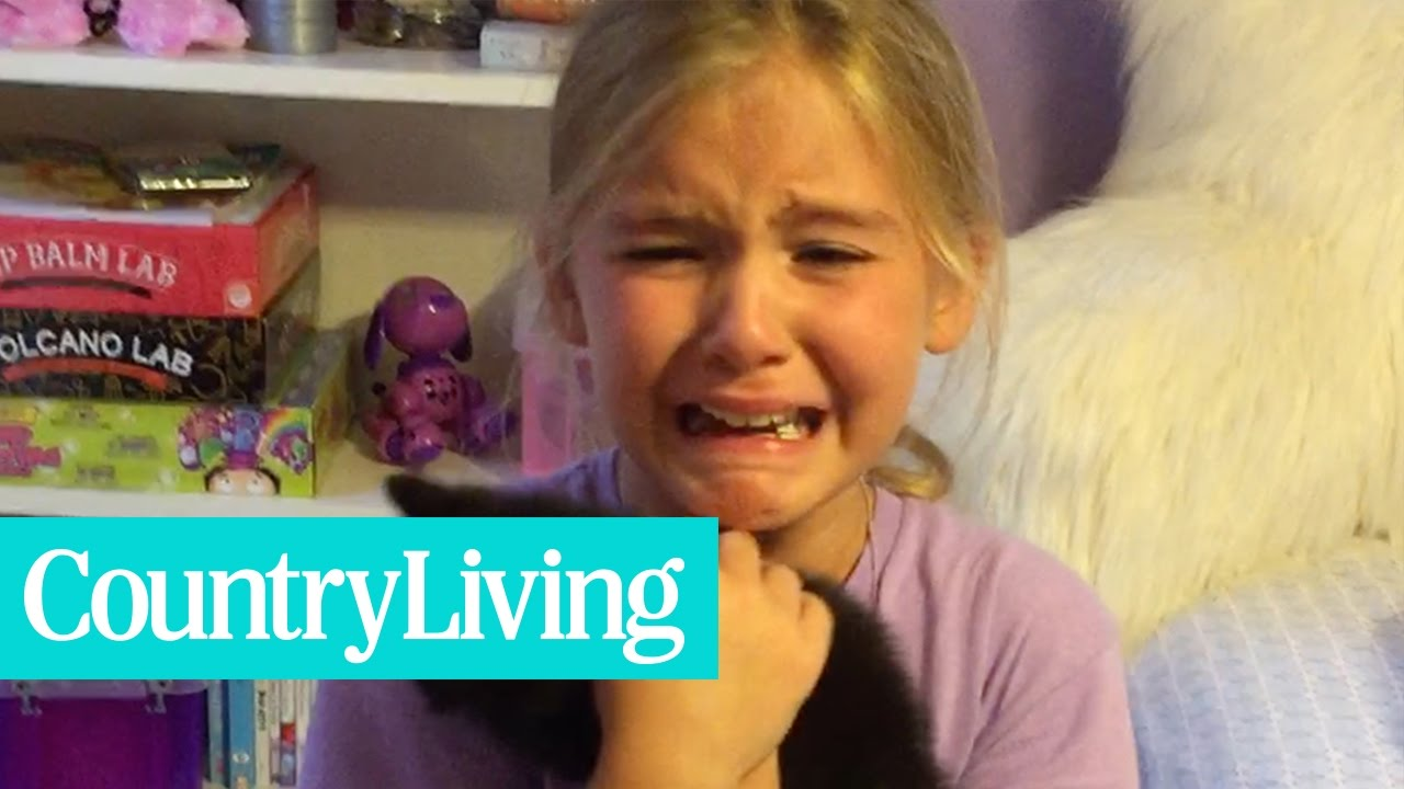 Little Girl is Surprised With a Brand New Kitten | Country Living