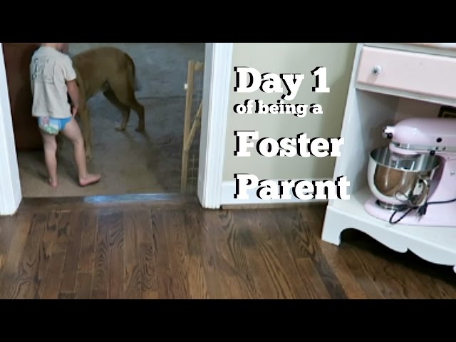 Day 1 of Foster Parenting | New Placement