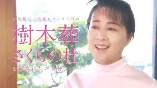 広島県内で樹木葬霊園を展開するフジタ石材のTVCMです。