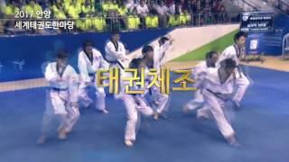 2017 Anyang World Taekwondo Hanmadang