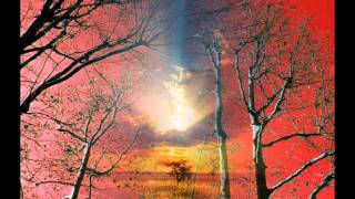 Piano Concerto No. 21.  Andante ~ Wolfgang Amadeus Mozart