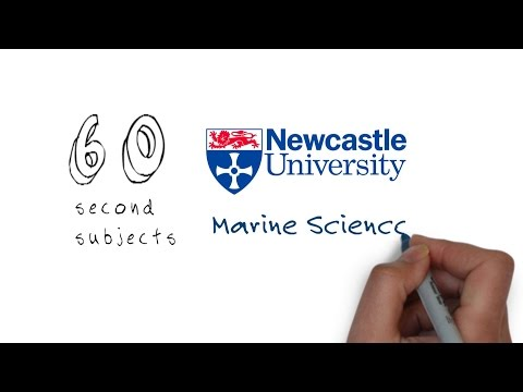 Marine Science Degrees At Newcastle University