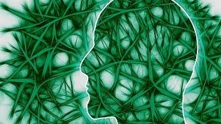 Cannabis Doesn't Affect Brain Size: Study