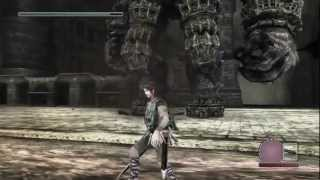 【1080p】 Shadow of the Colossus HARD -PS3 walkthrough- (6th Colossus: The Goliath)