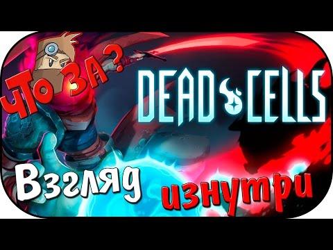 Что за Dead Cells ? - Взгляд Изнутри